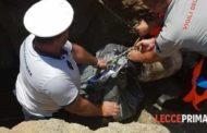 Ritrovato un sacco pieno di ossa a Roca, nel Salento: aperta un'indagine per stabilire l'origine dei resti (VIDEO)