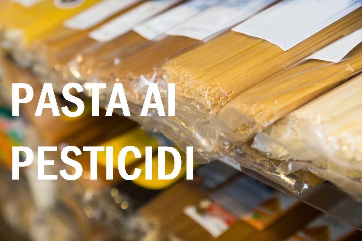 Glifosato nella pasta italiana: l'inchiesta 2020 de Il Salvagente svela 7 marchi su 20